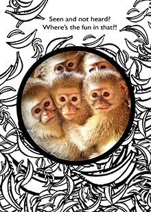 baby monkeys card