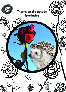 love valentine hedgehog card