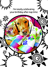 belated-birthday-retriever-greeting