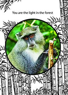 forest-monkey-card